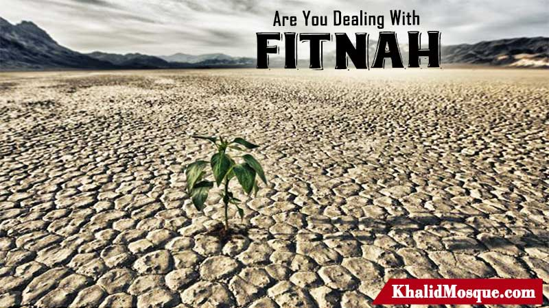 Are You Dealing With Fitnah?