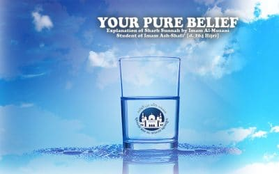 Your Pure Belief