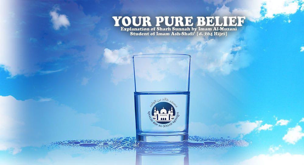 Your-Pure-Belief-Post-Header